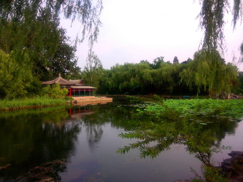 荷塘石头风景图