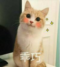 乖巧_meitu_1.jpg