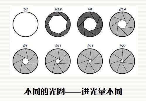75478509gcc5074bc8f9f&690_看图王.jpg
